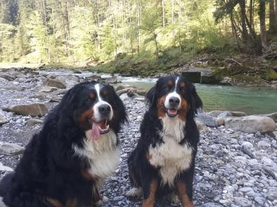 Amira und Cosmo - Aach